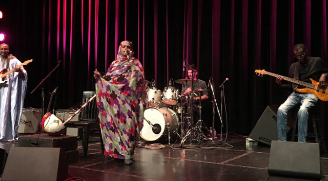Noura Mint Seymali Live at UCSD